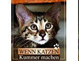 Buchtipp für Katzenbesitzer