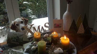 Einen schönen 3. Advent...