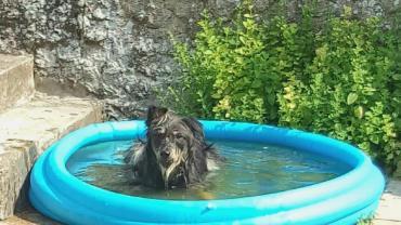 Alegra alias Nuba schickt Badegrüße
