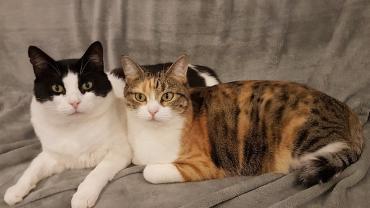 Mimi und Aixa melden sich!