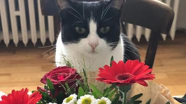 Blumengrüße von Maxl und Valentina