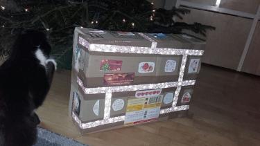 Weihnachtsüberraschung für Thelma