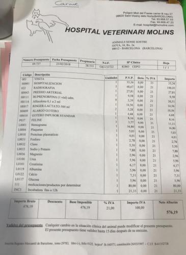 presupuesto-23-2-2018.jpg