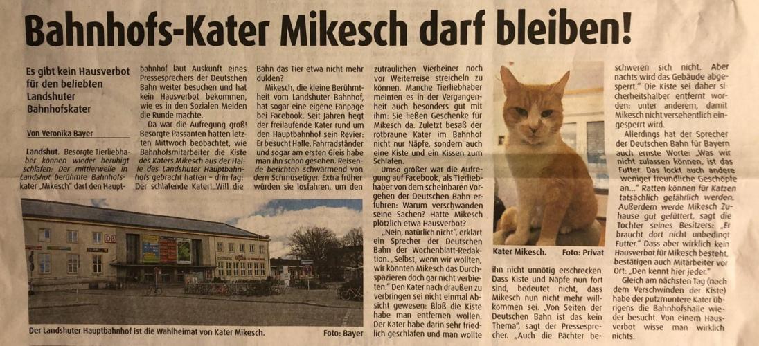 mikesch.jpg